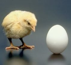 Which comes first the chicken or the egg